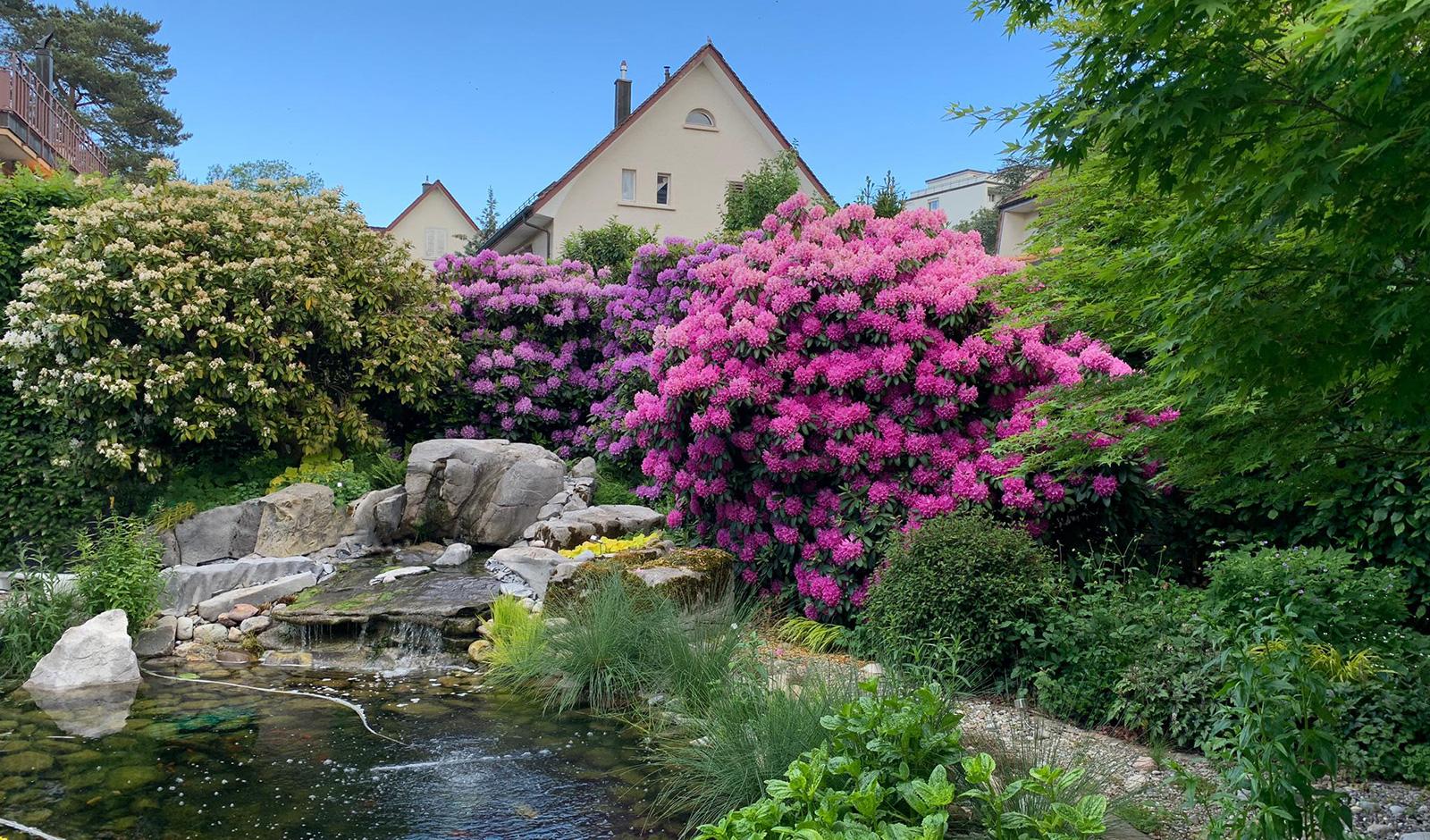 Wunderschönes Einfamilienhaus mit paradiesischem Garten